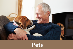 Pet information for seniors