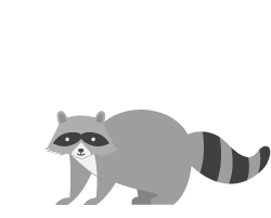 Raccoon icon illustration