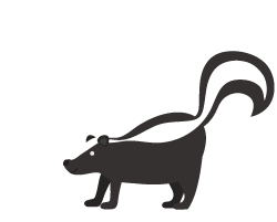 Skunk icon illustration