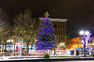 Christmas Tree of Hope in Gore Park