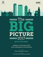 Cover of The Big Picture Report