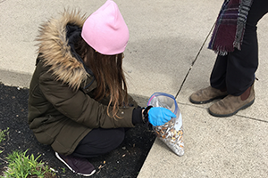 Volunteer picking up cigarette butts