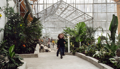Interior view of the Gage Park Greenhouse