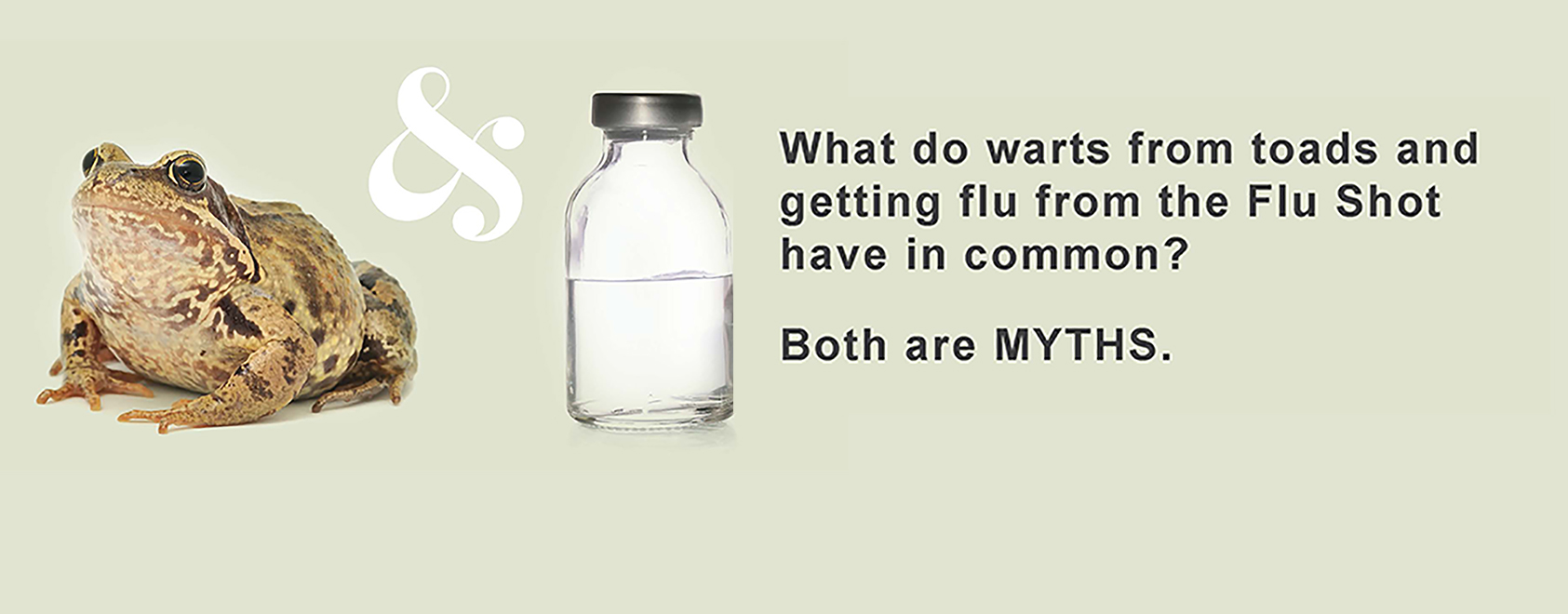 What do warts from toads and getting the flu from the Flu Shot have in common?  Both are Myths
