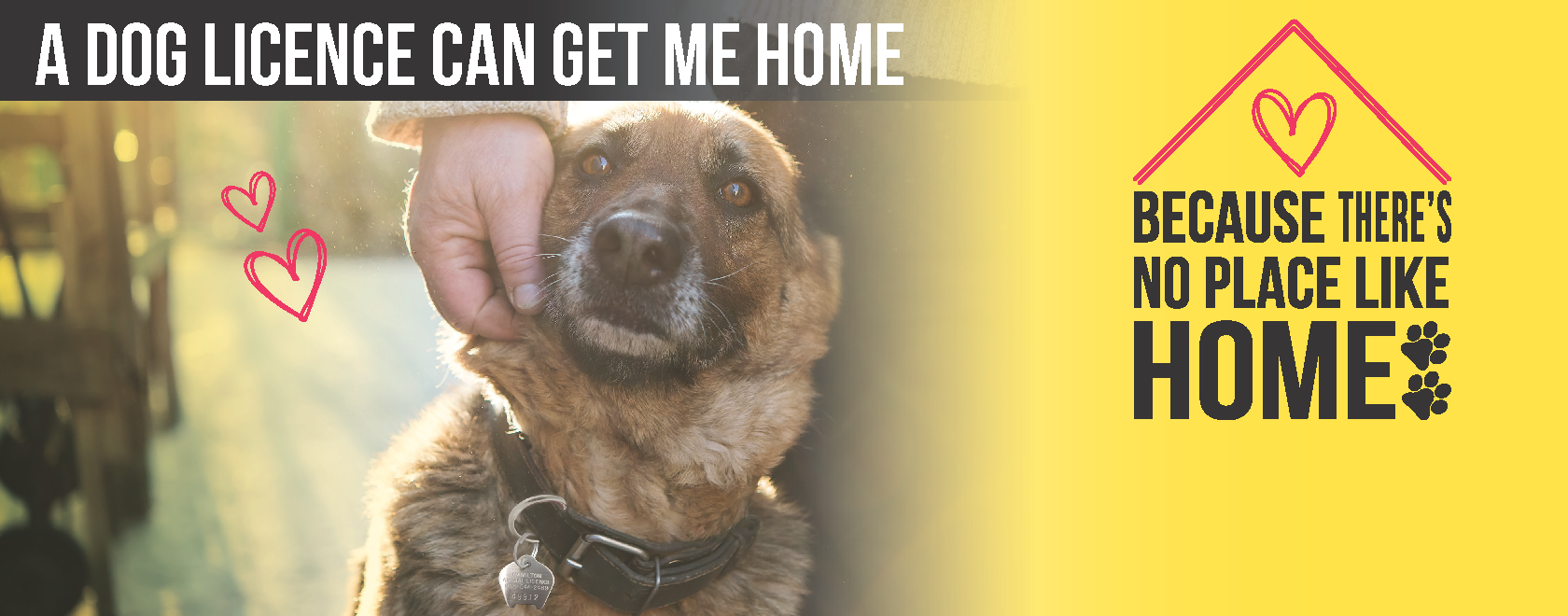 "Image of dog with it's owner with the text ""A dog Licence can get me home"""