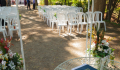 Maple Walk Wedding Setup at Dundurn